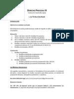 Apuntes de Derecho Procesal III