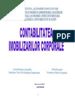 Contabilitatea Imobilizarilor Corporale La SC Remar SA