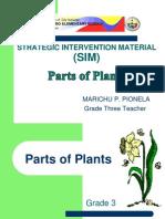 Plant Parts Marichu