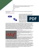 MP Fuerzas Intermoleculares-2