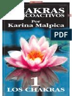 CHAKRAS Y PSICOACTIVOS I_Por Karina Malpica