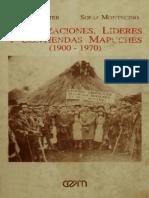 Foerster y Montecino -Organizaciones, Liders y Contiendas Mapuches