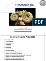 Sedimentologia Tema Diagenesis