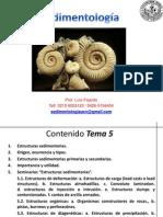 Sedimentologia Tema 4 I-2012