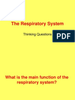 Respiratory System TQ