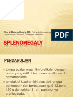 SPLENOMEGALY rhy