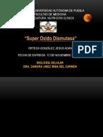Super Oxido Dismutasa