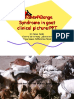Dhakeri-Bange Syndrome in goat clinical picture:PPT