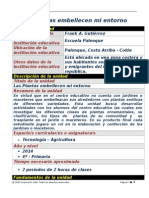 plantilla plan unidad frank gutirrez34
