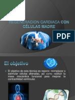 REGENERACION CARDIACA con células madre