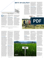 Rice Today Vol. 12, No. 4 The not-so-silent revolution