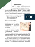 Fisiologia Oral III Posiciones Mandibulares