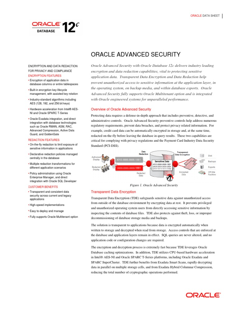 Advanced Security Ds 12c | Oracle Database | Encryption