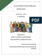 ANTOLOGI?A ANA?LISIS DE LA ESTRUCTURA FAMILIAR 2013 copia.pdf
