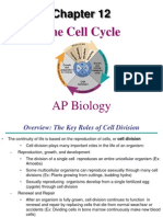 AP Bio Ch. 12 the Cell Cycle
