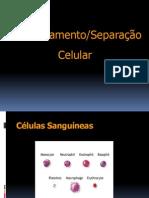 Fraccionamento Celular