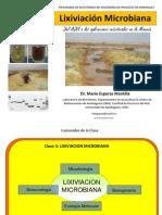 Clase 3 Lixiviacion Microbiana