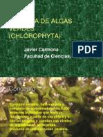 Clase Chlorophyta(1)