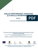 analiza performantei financiare