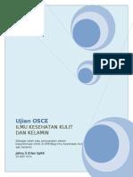 OSCE  Kulit April 2010.doc