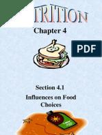 Chapter 4 - Nutritiron (2)