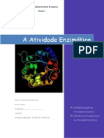 A Atividade Enzimática relatorio 1 quim Apl modulo4