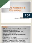 Lesson 3 Joints 2013-14