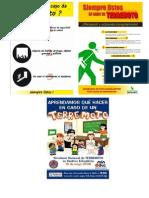 Ejemplos de Afiches Terremoto