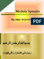 38951103 Trauma Medula Spinalis