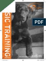 SportDog Brand Basic Training