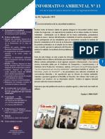 Boletín Informativo N° 13