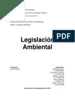LEGISLACION AMBIENTAL ANALISIS