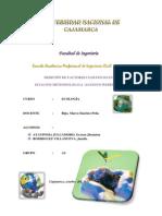 informe N _ 1.docx
