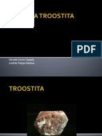 TROOSTITA-1