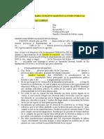Formato Escrito Detenciones Arbitrarias en Manifestaciones Publicas - Pedido Habeas Corpus