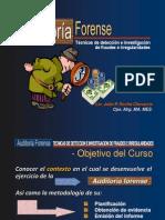 01-Auditoria forense