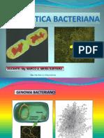 Cromosoma Bacteriano Ok