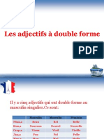 les adjectifs  double forme-ppt