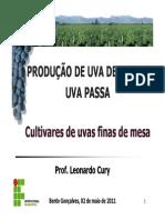 24297-Aula 1 - Cultivares de Uva Finas de Mesa
