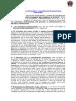 Analisis de Los Principios y Garantias Procesales
