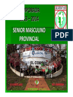 2013.Programacion.senior.masculino.provincial