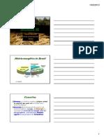 Biomassa [Somente Leitura] [Modo de Compatibilidade]