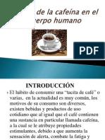 Accion de La Cafeina en El Organismo (1)