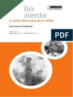 Medio Ambiente y Lineas Directrices de La OECD FARN
