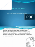 Trichiuris Trichiura + Endolimax Nana xD