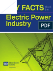 Key Facts About Electric Power Industry