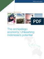 MGI Unleashing Indonesia Potential Executive Summary