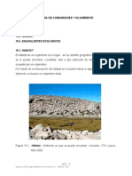 Tema 15 a 20 2005.pdf   .