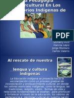Educación Indigena 2007