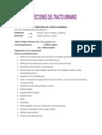 Infeccion Urinaria Para Bact III